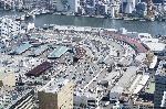 小池劇場~豊洲移転問題、築地市場では駄目なのか?決断は?